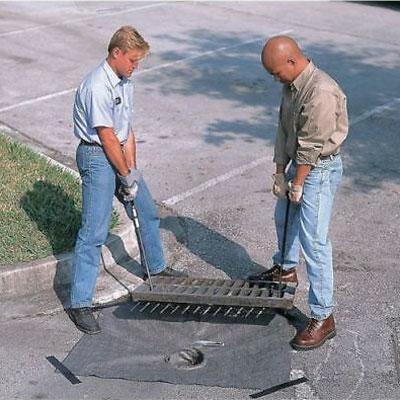 drain guard inserts