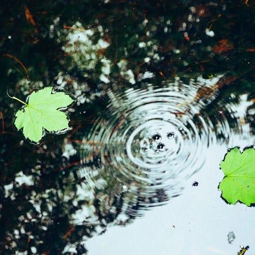 ripple in outdoor water source